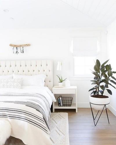 Quarto minimalista branco com planta
