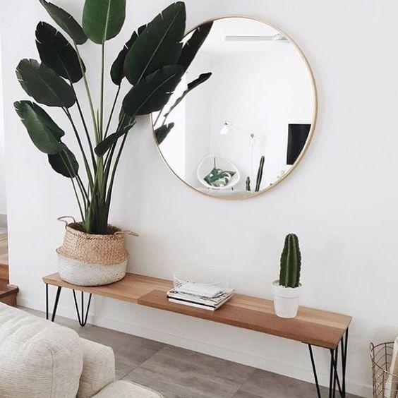 Decoração com Plantas - Banco na entrada de casa e vaso de planta