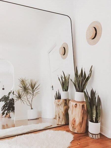 Decoração com Plantas - Plantas pequenas no chão em frente ao espelho