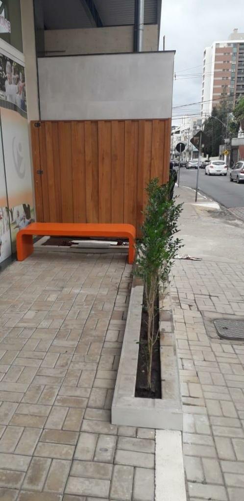 Decoração com Plantas: Cor e Vida Para Casa! 1