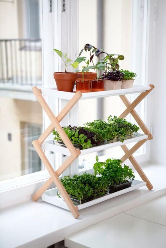 Decoração com Plantas: Cor e Vida Para Casa! 2