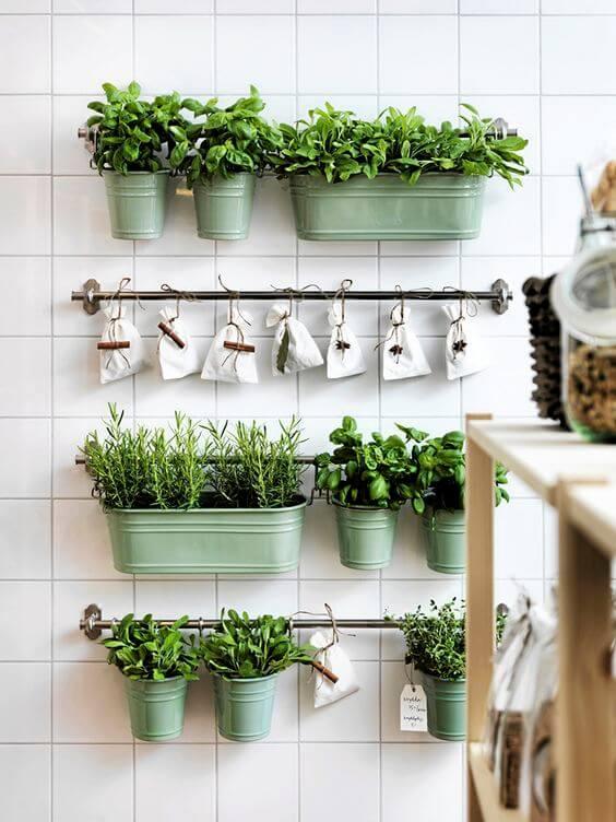 Decoração com Plantas: Cor e Vida Para Casa! 3