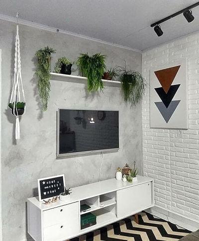 Cimento queimado na sala e plantas na prateleira
