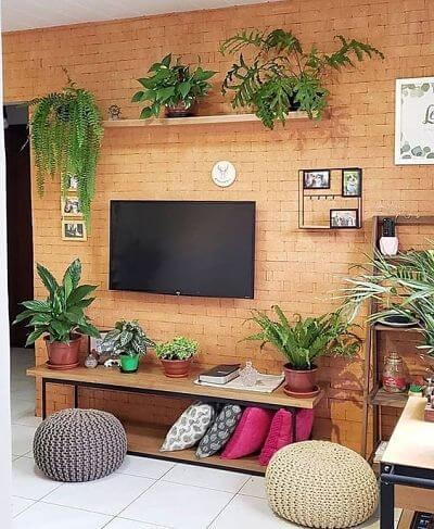 Plantas em apartamento