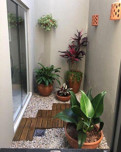 jardim inverno simples