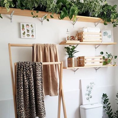 Banheiro simples decorado com prateleiras e plantas.