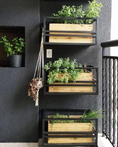 Hortas em pequenos espaços