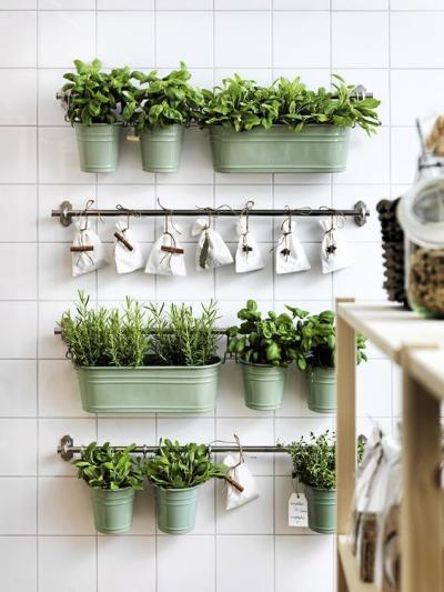 Hortas suspensa em pequenos espaços