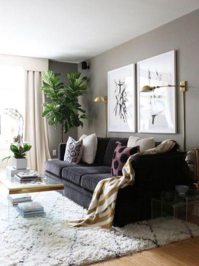 sala com sofá preto e planta lateral