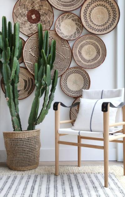 Parede decorada com cestos e planta cacto