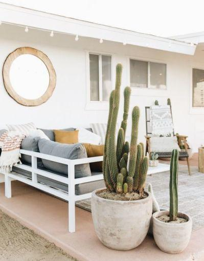 Plantas resistentes ao sol - cacto na varanda