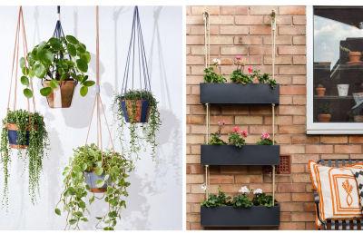 Plantas pendentes na parede