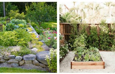 Plantas e horta no jardim