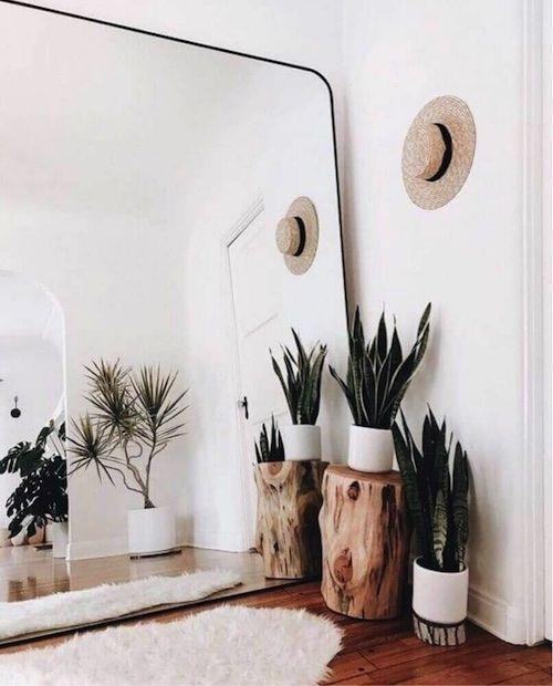 Canto de sala com plantas e espelho grande