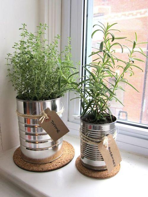 Horta pequena em lata decorada na janela