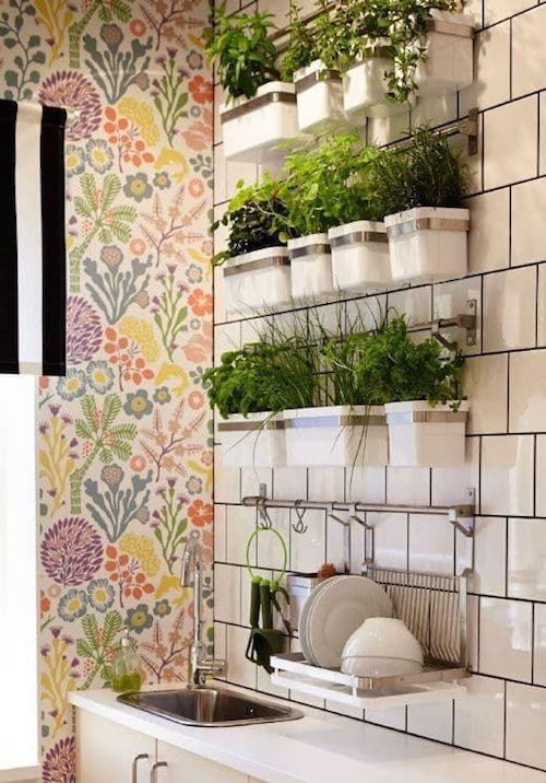 Parede decorada com horta suspensa na cozinha