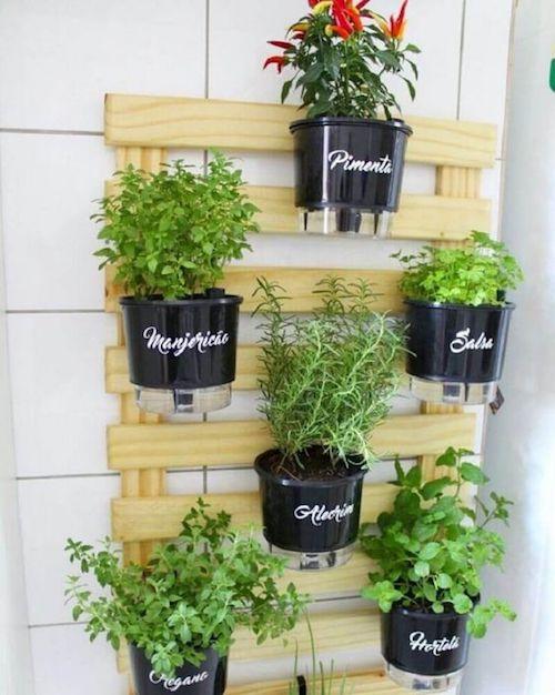 Horta em casa - decoração com horta suspensa