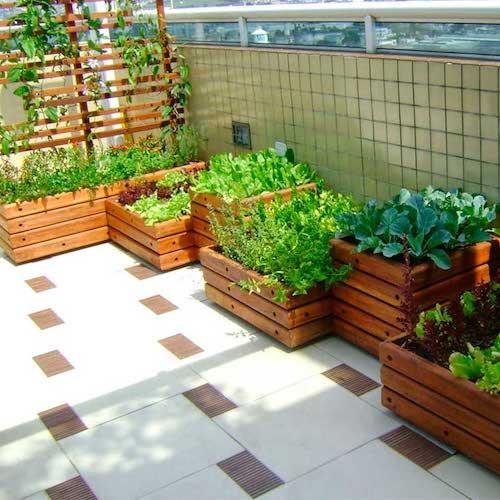 Horta em caixotes de madeira na varanda de apartamento